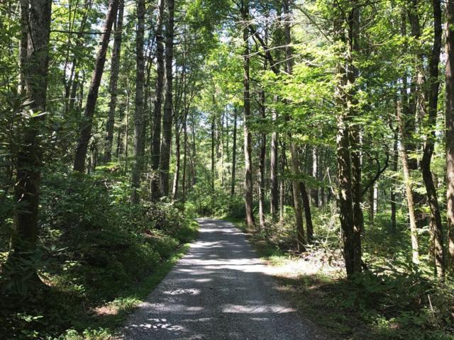 Mountain Breeze Drive, Townsend, TN 37882 (#1063978) :: Billy Houston Group
