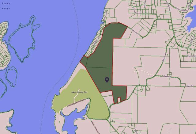 1037 Oak Grove Rd, Decatur, TN 37322 (#1064043) :: Billy Houston Group