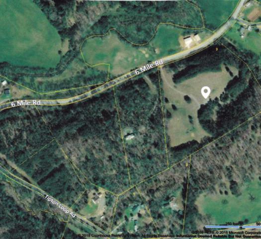 3914 Six Mile Rd, Maryville, TN 37803 (#1064051) :: Catrina Foster Group