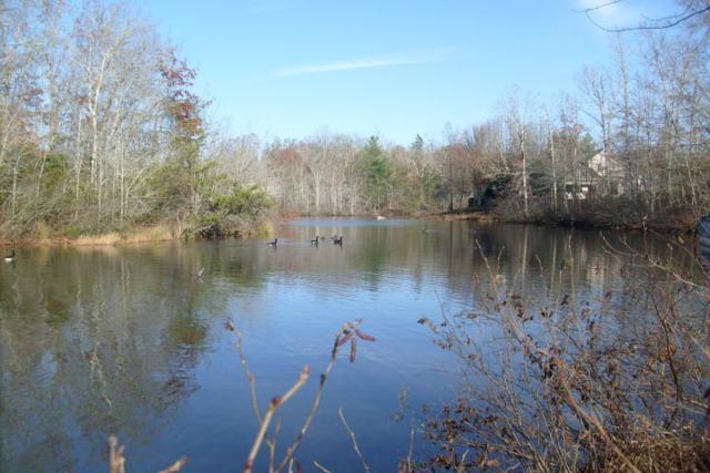 4080 Lone Wolf Circle, Crossville, TN 38572 (#1064053) :: CENTURY 21 Legacy