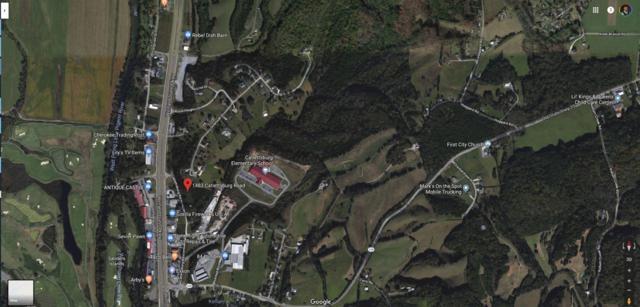 1483 Catlettsburg Rd, Sevierville, TN 37876 (#1064133) :: The Terrell Team