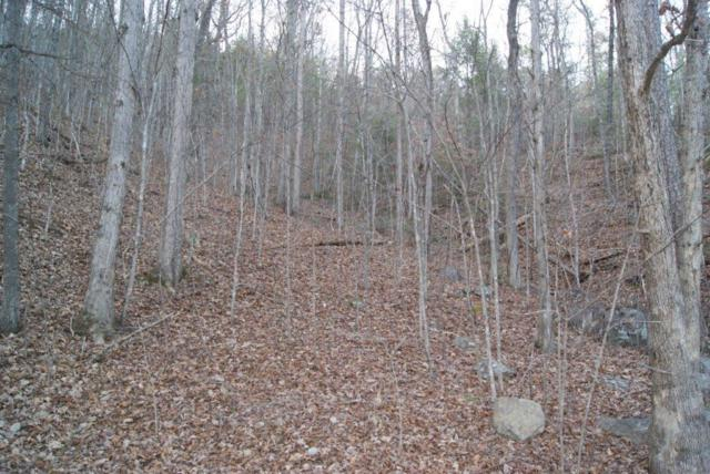 Lot# 7 Mountain Blvd, Sevierville, TN 37876 (#1064278) :: Shannon Foster Boline Group