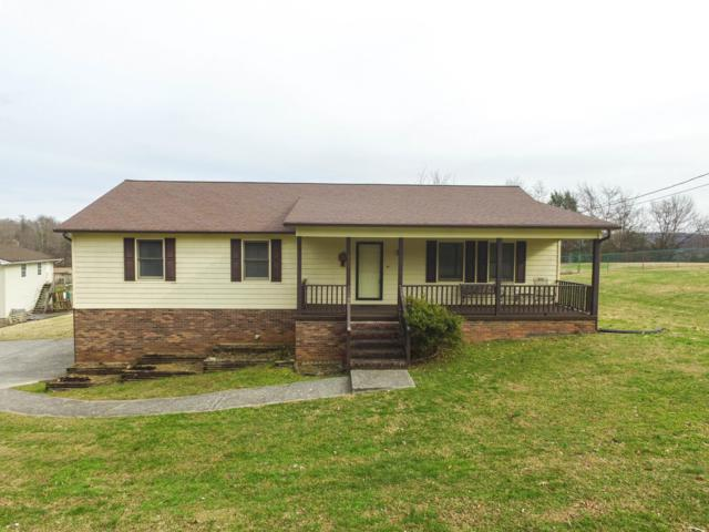 111 Mohawk Lane, Clinton, TN 37716 (#1064342) :: Billy Houston Group