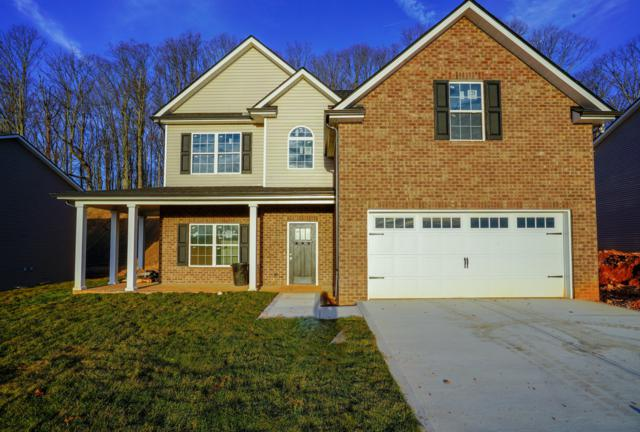 3126 Oakwood Hills Lane, Knoxville, TN 37931 (#1064524) :: Billy Houston Group