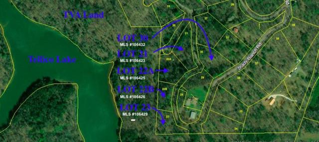 Lot 30 Old Citico Rd, Vonore, TN 37885 (#1064632) :: Billy Houston Group