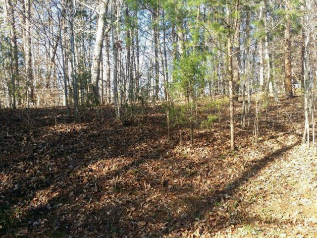 Lakeside Trace, Townsend, TN 37882 (#1064638) :: Billy Houston Group