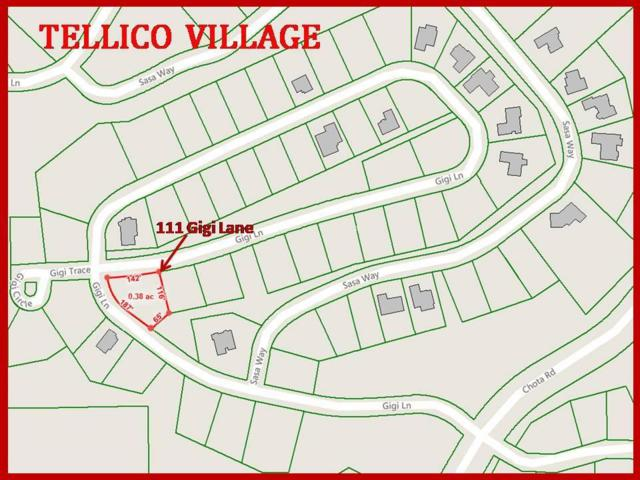 111 Gigi Lane, Loudon, TN 37774 (#1064646) :: Shannon Foster Boline Group
