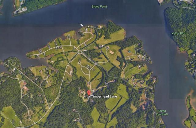 Lot 150 Timberhead Lane, Louisville, TN 37777 (#1064768) :: Realty Executives