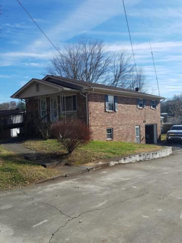 3356 Sheila Circle, White Pine, TN 37890 (#1064790) :: Billy Houston Group