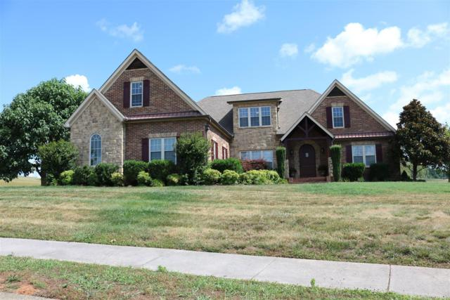 1302 Rippling Waters Circle, Sevierville, TN 37876 (#1064991) :: Shannon Foster Boline Group