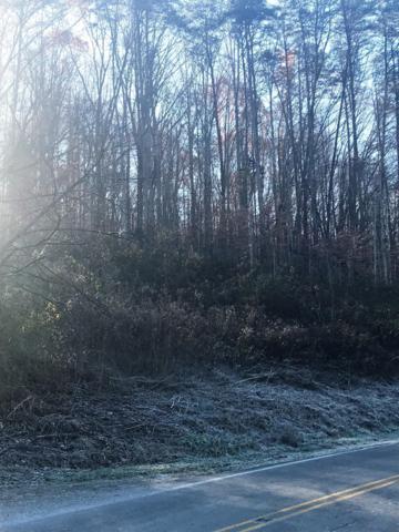 Sugar Grove Valley Road, Harriman, TN 37748 (#1064999) :: Billy Houston Group