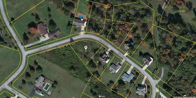 Twin Oaks Drive, Rockwood, TN 37854 (#1065027) :: Tennessee Elite Realty