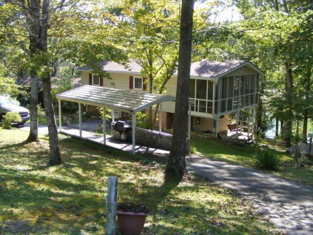 450 Cape Norris Rd, New Tazewell, TN 37825 (#1065141) :: Billy Houston Group