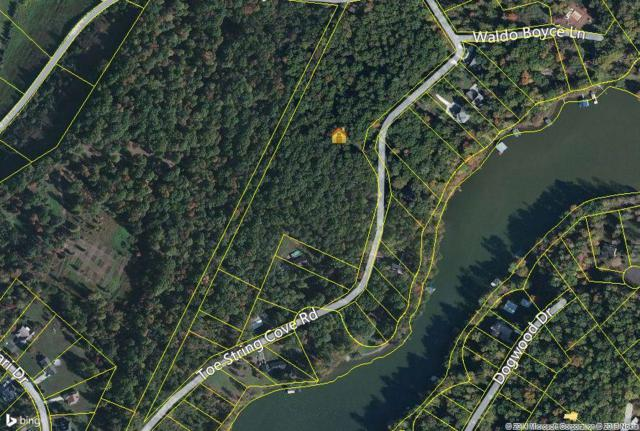 15.6 Acres Toestring Cove Rd, Spring City, TN 37381 (#1065345) :: Tennessee Elite Realty