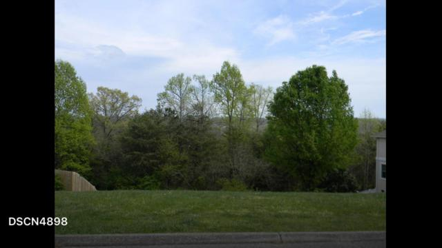 7000 Lake Bluff Court, Knoxville, TN 37920 (#1065486) :: Billy Houston Group