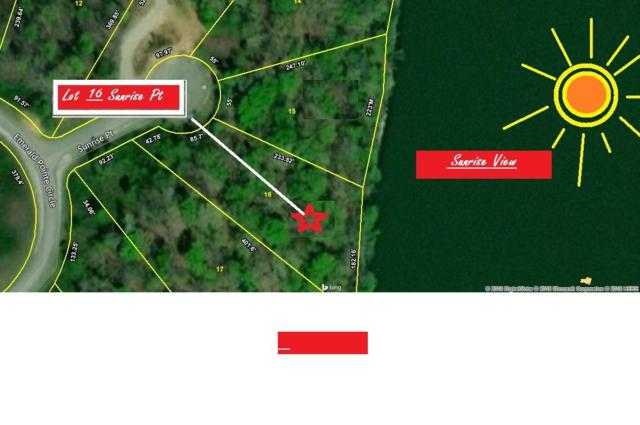 Sunrise Point, Rockwood, TN 37854 (#1065490) :: Billy Houston Group