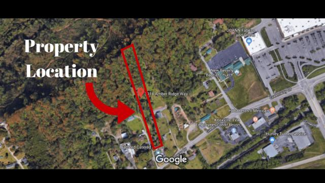 3914 Amber Ridge Way, Knoxville, TN 37918 (#1065514) :: Billy Houston Group