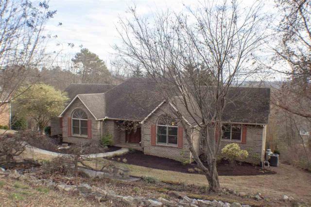 1215 Pine Haven Drive, Morristown, TN 37814 (#1065583) :: Billy Houston Group