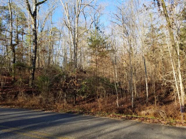 Bluegreen Way, Rockwood, TN 37854 (#1065712) :: The Creel Group | Keller Williams Realty