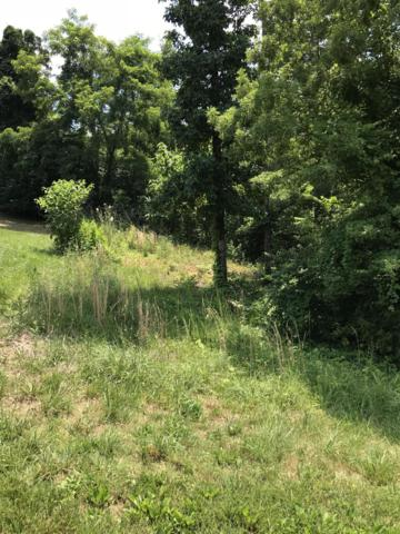 Lot #3 Cabot Ridge Lane, Knoxville, TN 37922 (#1065735) :: Shannon Foster Boline Group