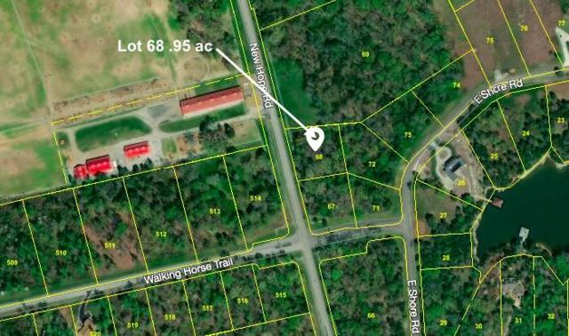 Lot #68 New Hope Rd, Rockwood, TN 37854 (#1065777) :: Realty Executives