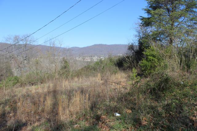 182 Blue Springs Rd, LaFollette, TN 37766 (#1065841) :: Billy Houston Group