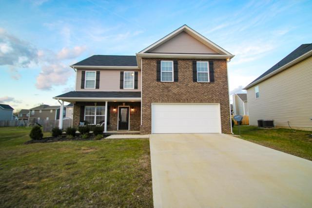 118 Scenic Yard, Maryville, TN 37804 (#1066061) :: Billy Houston Group