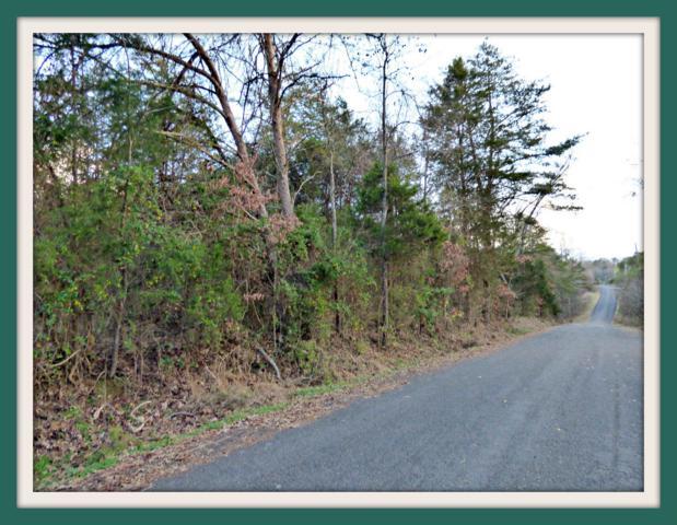 Lot 6 Ranch Rd, Dandridge, TN 37725 (#1066081) :: Venture Real Estate Services, Inc.