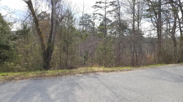 Lot 6 Dillon Drive, LaFollette, TN 37766 (#1066090) :: Realty Executives