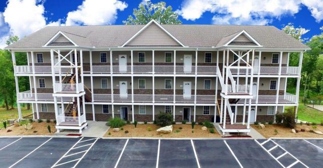 234 Sunset Cove Drive, Maynardville, TN 37807 (#1066092) :: Billy Houston Group