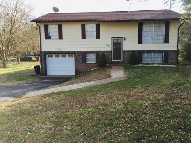 4402 Mace Lane, Knoxville, TN 37938 (#1066103) :: Billy Houston Group