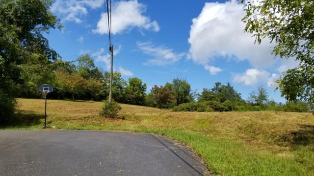 Parkview Circle, New Tazewell, TN 37825 (#1066149) :: Billy Houston Group
