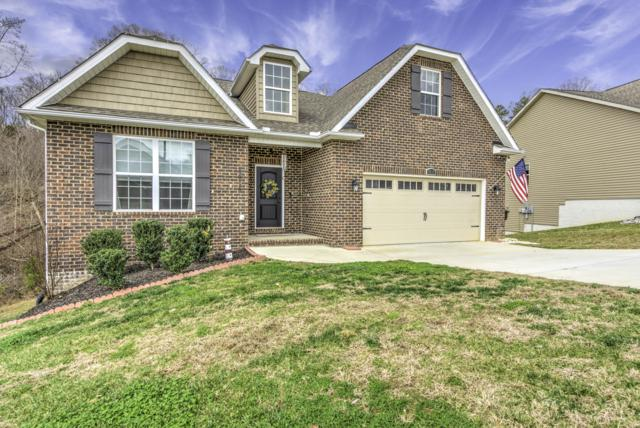 3013 Maple Knot Lane, Knoxville, TN 37931 (#1066197) :: Billy Houston Group