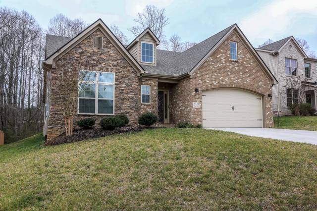 3331 Teal Creek Lane, Knoxville, TN 37931 (#1066315) :: Billy Houston Group