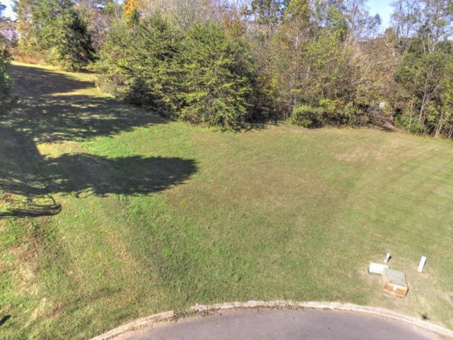 Radisson Cove, Oak Ridge, TN 37830 (#1066364) :: Venture Real Estate Services, Inc.