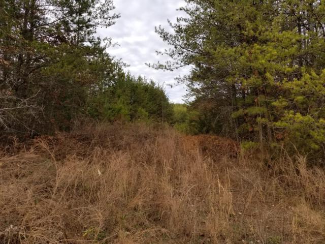 Snyder Rd, Kodak, TN 37764 (#1066426) :: SMOKY's Real Estate LLC