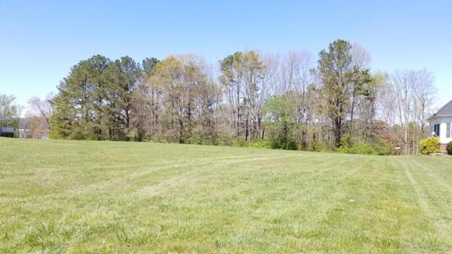 Big Oak Drive, Dandridge, TN 37725 (#1066434) :: Venture Real Estate Services, Inc.