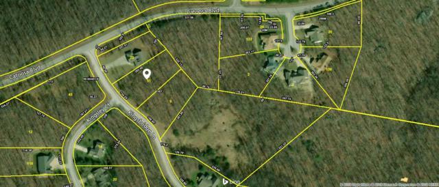 Kingsbridge Lane, Fairfield Glade, TN 38558 (#1066487) :: Billy Houston Group