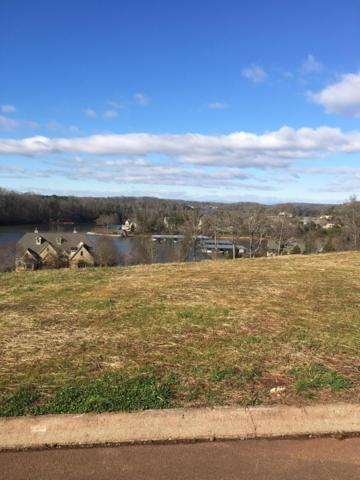 195 Hummingbird Lane, Loudon, TN 37774 (#1066497) :: Billy Houston Group