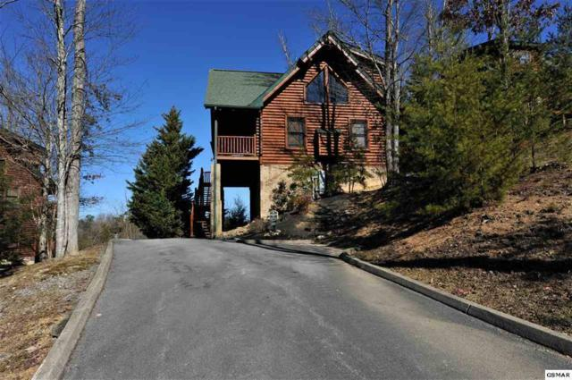 1665 Mountain Lodge Way, Sevierville, TN 37876 (#1066498) :: Shannon Foster Boline Group