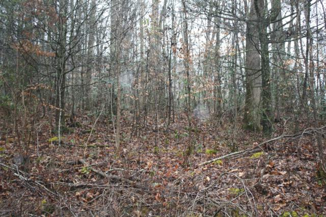 Lot 40 S Grand Country Drive, Cosby, TN 37722 (#1066576) :: SMOKY's Real Estate LLC