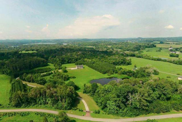 3541 Windy J Farms, Louisville, TN 37777 (#1066763) :: Billy Houston Group