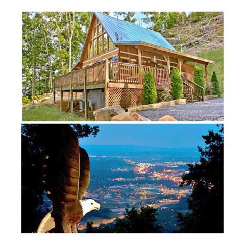 3529 Twin City Way, Pigeon Forge, TN 37863 (#1066779) :: SMOKY's Real Estate LLC