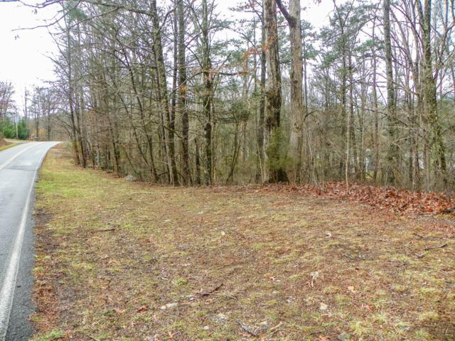 Lot# 6 Alpine Drive, Sevierville, TN 37876 (#1066794) :: Billy Houston Group