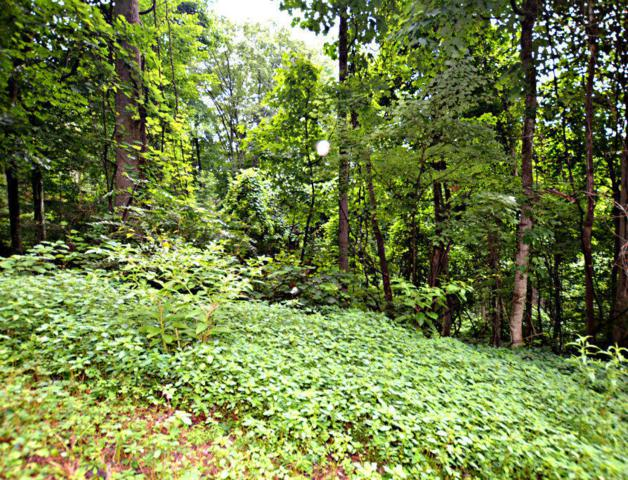 Lot 10 N Baden Drive, Gatlinburg, TN 37738 (#1066834) :: Billy Houston Group
