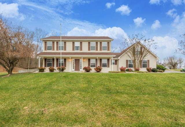 8142 Jack Russell Court, Powell, TN 37849 (#1066971) :: Billy Houston Group