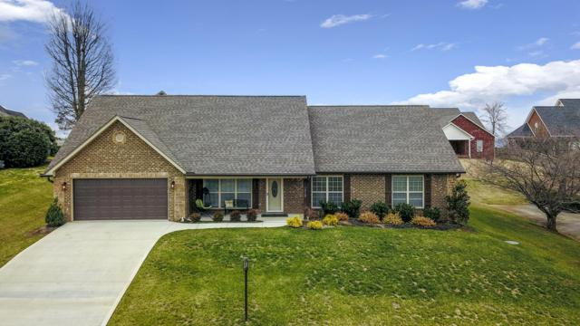 819 Royal View Drive, Maryville, TN 37801 (#1067015) :: Shannon Foster Boline Group