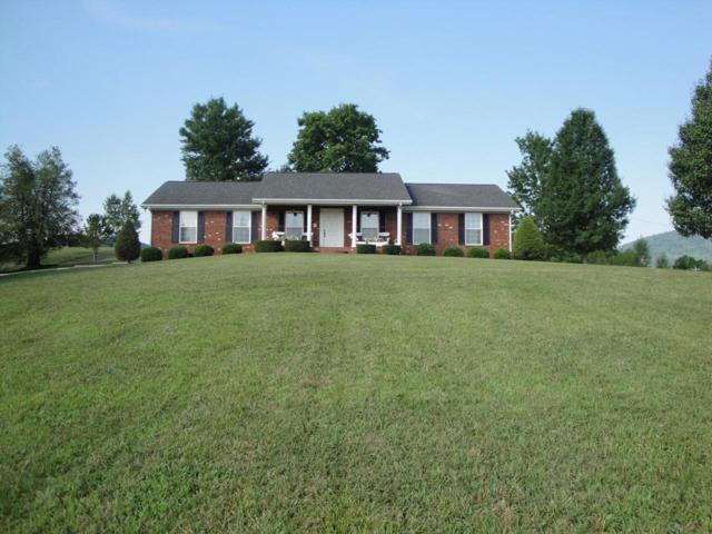 2576 Bogard Rd, Newport, TN 37821 (#1067046) :: SMOKY's Real Estate LLC