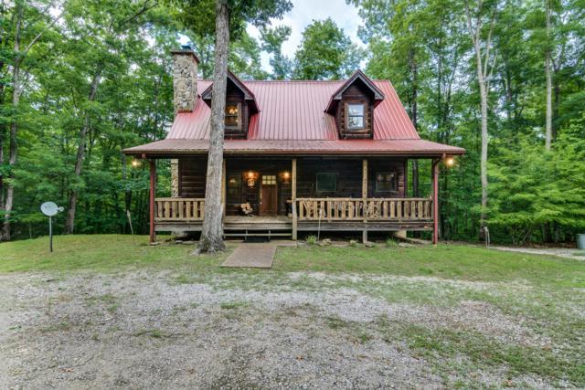 1555 Wilderness Tr, Oneida, TN 37841 (#1067063) :: Billy Houston Group