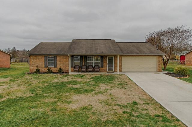 7216 Pisa Circle, Corryton, TN 37721 (#1067078) :: Shannon Foster Boline Group
